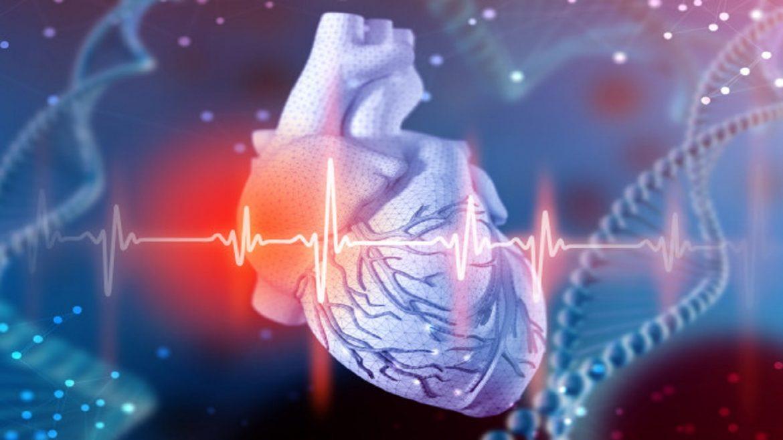Hipertensión arterial afecta a 23 millones de mexicanos..